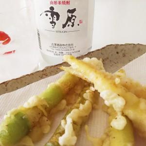 【東北の山菜×米焼酎】月山のネマガリダケを山形寒河江の米焼酎『雪原』と一緒にいただきます