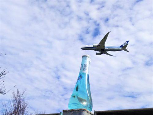 成田空港に隣接する「さくらの山公園」は離発着する飛行機を間近で見られる展望&撮影スポット