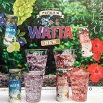 オリオンビールのチューハイ「WATTA」関東本格上陸、秋には全国展開へ – 新商品「ちゅらWATTA」も発売